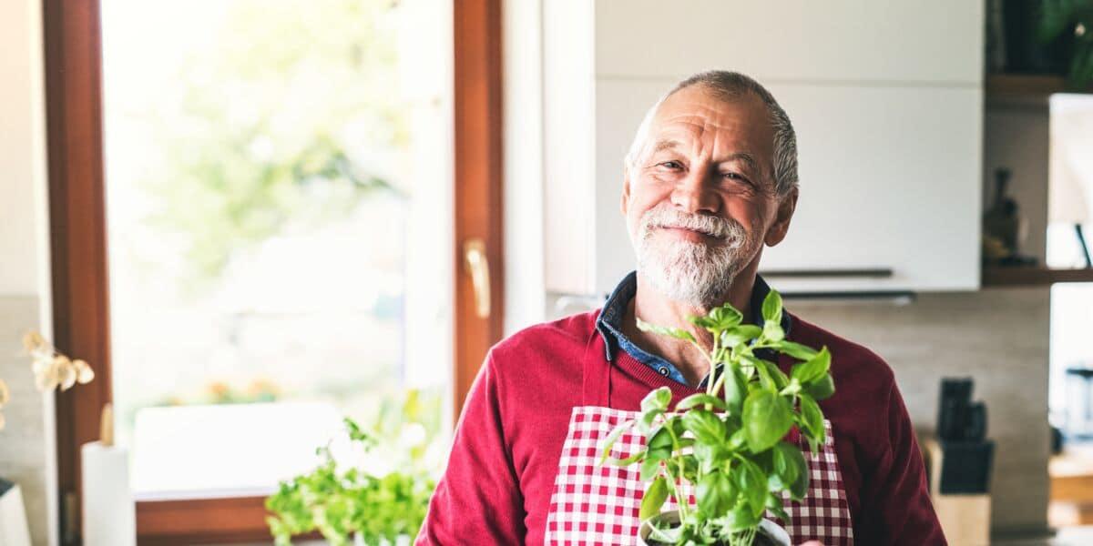 Maladie d'Alzheimer : un composant du basilic s'avère efficace dans le traitement de la maladie